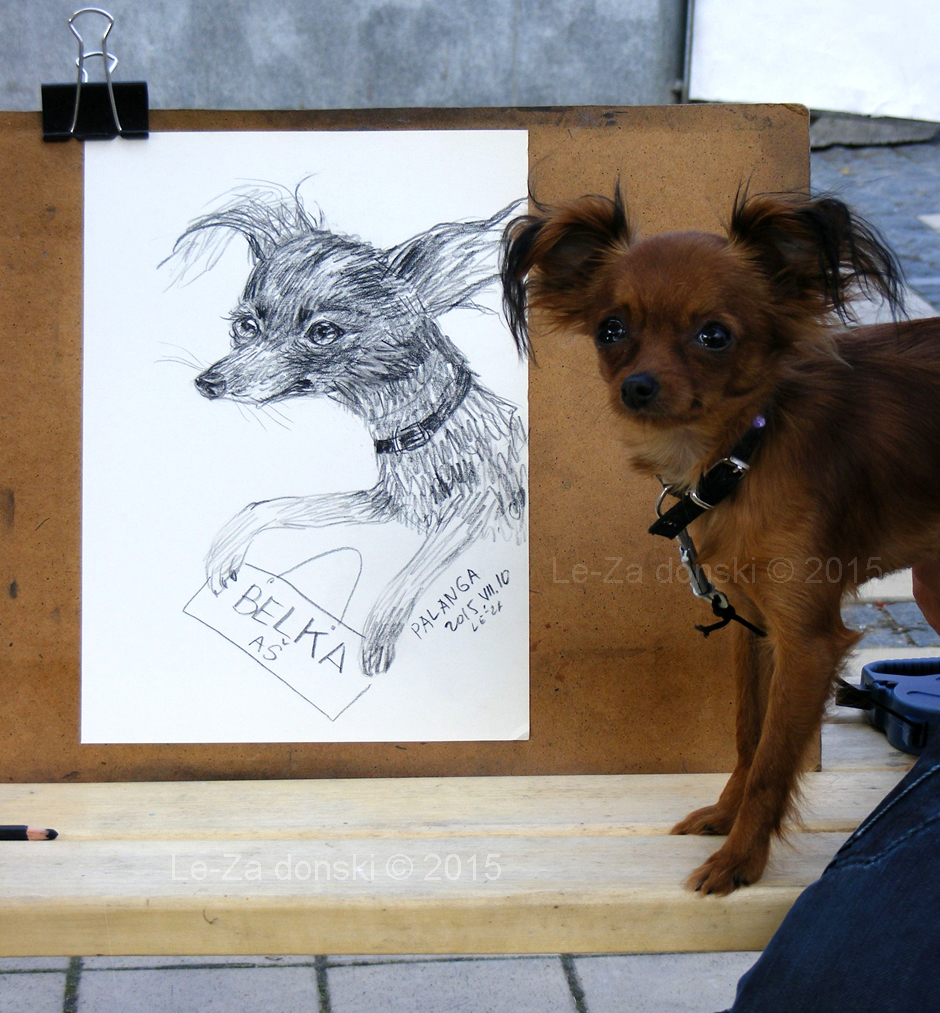 "Portrait of of dog ""BELKA"", life drawing from a live model"