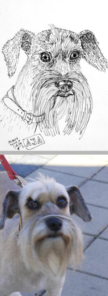 """""""AJA"""", šuniuko karikatūra piešta """"gyvai"""" Palangoje, Basanavičiaus g., Copyright 2016 © dailininkas Leonid Zаdonski (Le-Za)"""